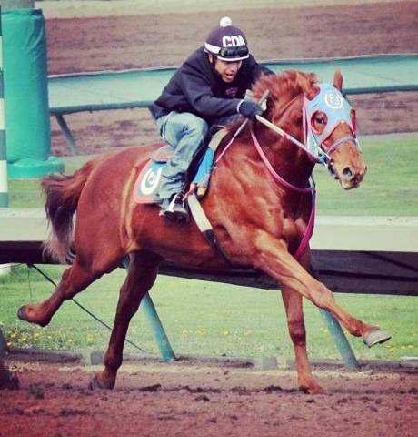 Skeen Finds Horsepower